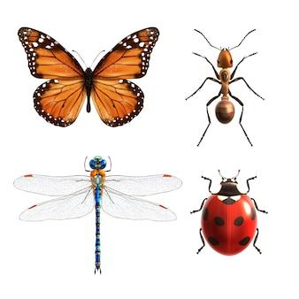 Conjunto realista de insectos.