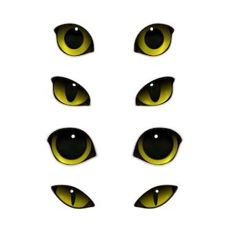 Conjunto realista de ojos de gatos
