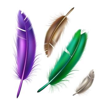 Conjunto realista de plumas de color pavo real pavo real