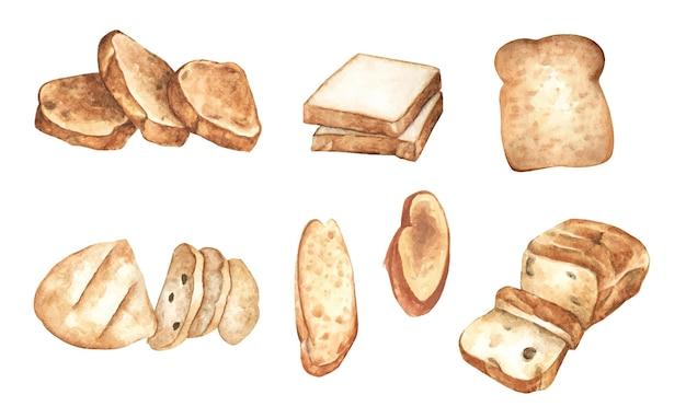 Conjunto de rebanadas de pan. ilustración de acuarela.