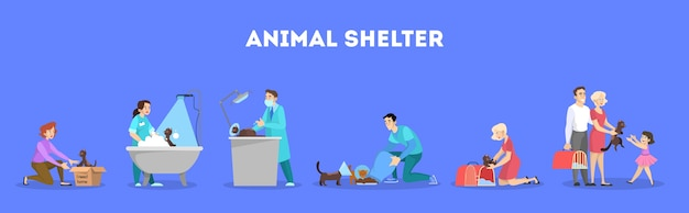 Conjunto de refugio de animales. gato sin hogar en la caja. idea de mascota