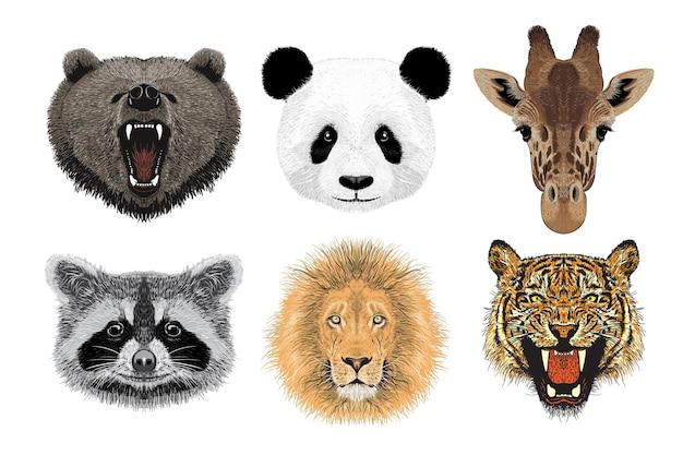 Conjunto de retratos de animales, ilustración dibujada a mano