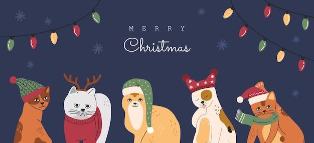 Conjunto de retratos de gatos de navidad, colección de gracioso gatito lindo con gorros y suéteres. gatito gris con cuernos de ciervo. ilustración de vector dibujado a mano, banner de año nuevo o tarjeta aislada sobre fondo azul