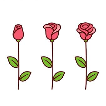 Conjunto rosa de dibujos animados