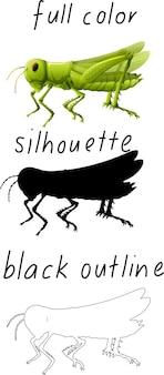 Conjunto de saltamontes en color, silueta y contorno negro sobre fondo blanco.