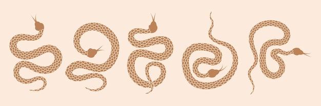 Conjunto de serpientes de objetos mágicos místicos luna ojos constelaciones sol y estrellas logo de ocultismo espiritual