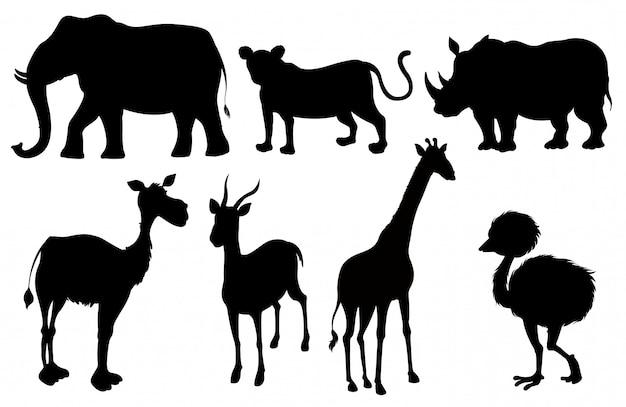 Conjunto de siluetas de animales exóticos.