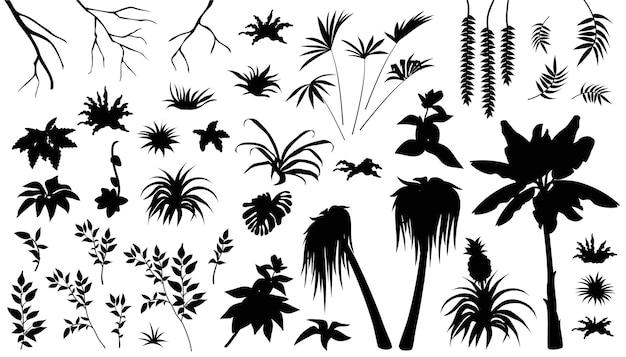 Conjunto de siluetas de hojas de palma y liana.
