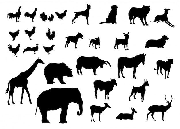 Conjunto de siluetas negras de animales de varios tipos.