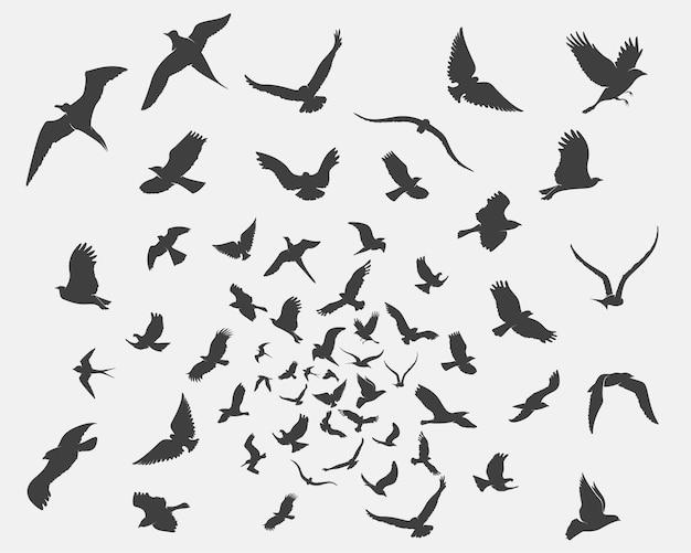 Conjunto de siluetas de pájaros en movimiento sobre un fondo blanco.