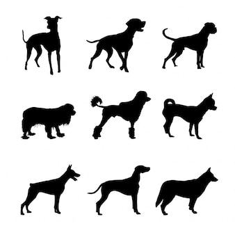 Conjunto de siluetas de perros