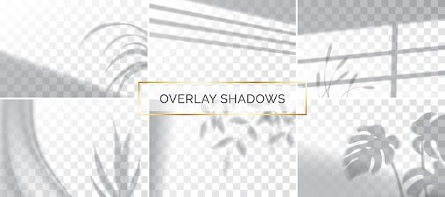 Conjunto de sombras, maqueta de efectos de superposición, marco de ventana y hoja de plantas, luz natural.