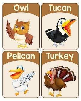 Conjunto de tarjeta educativa de palabras en inglés de pájaros