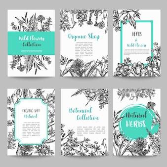Conjunto de tarjeta con hierbas y flores silvestres.