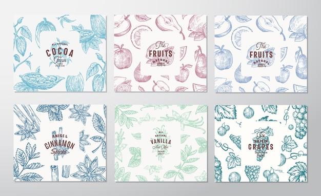 Conjunto de tarjetas dibujadas a mano de uvas, frutas, granos de cacao, menta, nueces y especias.