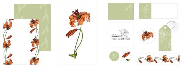Conjunto de tarjetas, etiqueta y precio de etiqueta con flores de lirio