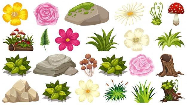 Conjunto de tema de objetos aislados - flores y rocas