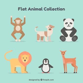 Conjunto típico de animales con diseño plano