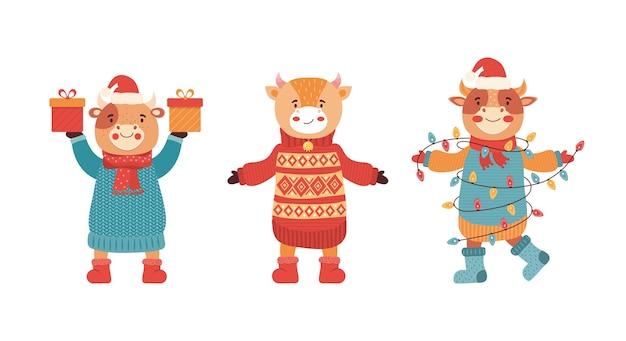 Conjunto de toros bebé divertidos dibujos animados en una fiesta de año nuevo. mascota del año nuevo 2021. lindo personaje animal en ropa de invierno con regalos y dulces. vaca, búfalo, ternero, buey. feliz navidad, ilustración