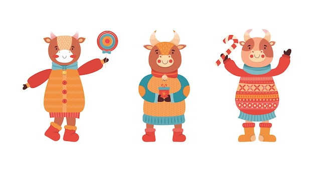 Conjunto de toros bebé divertidos dibujos animados. mascota del año nuevo 2021. lindo personaje animal en ropa de invierno con regalos y dulces. vaca, búfalo, ternero, buey en una fiesta de año nuevo.