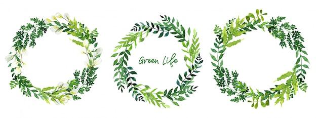Conjunto de tres coronas de acuarela verde, hojas dibujadas a mano