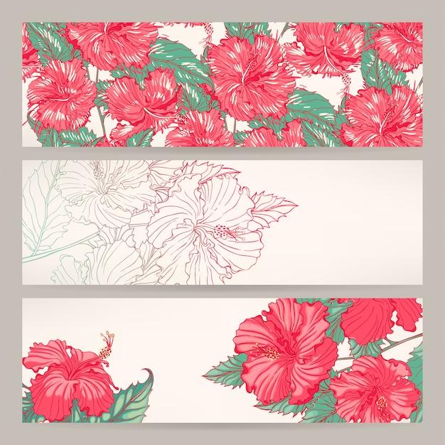 Conjunto de tres hermosas pancartas con hibisco rosa.