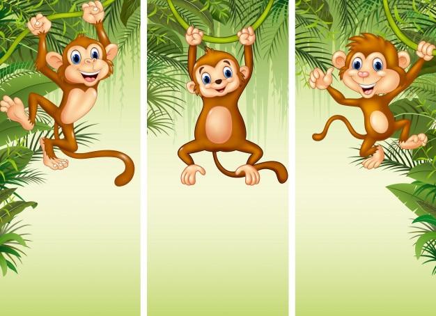 Conjunto de tres monos