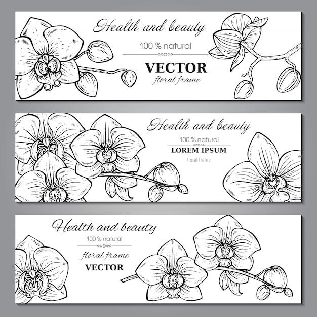 Conjunto de tres pancartas horizontales con hermosas flores de orquídeas