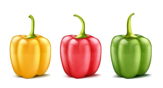 Conjunto de tres pimientos realistas o búlgaro, rojo, verde y amarillo