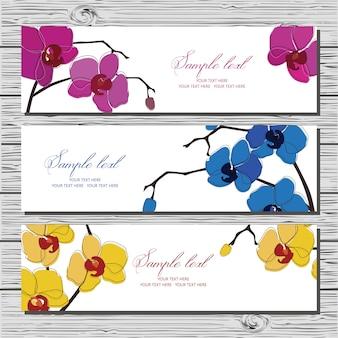 Conjunto de tres tarjetas horizontales con la orquídea en el fondo blanco.