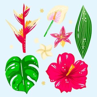 Conjunto tropical de hojas y flores