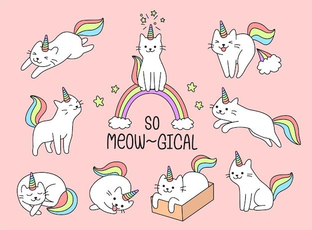 Conjunto de unicornio adorable gato