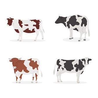 Conjunto de vacas de dibujos animados.