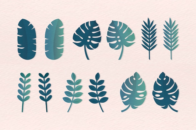 Conjunto de varias hojas tropicales.