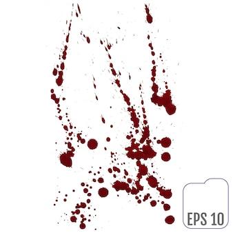 Conjunto de varios sangre