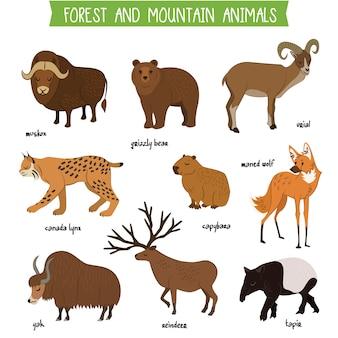 Conjunto de vector aislado de animales de bosque y montaña