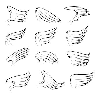 Conjunto de vector de alas de pájaro dibujado a mano