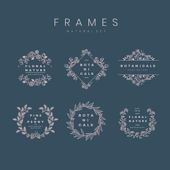 Conjunto de vector de elementos de diseño botánico marco