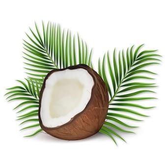 Conjunto de vector realista 3d de coco, mitades de coco y hojas de palma