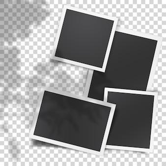Conjunto de vector realista de plantillas de fotos antiguas con superposición de sombras desde la ventana y plantas fuera de la ventana. luz ambiental suave y realista. diseño retro y vintage. plantilla de marco de foto retro.