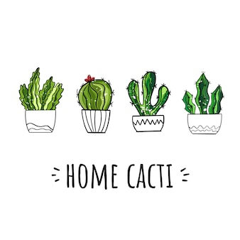 Conjunto de vectores de cactus en casa. estilo dibujado a mano.