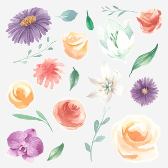 Conjunto de vectores de flores florecientes de acuarela