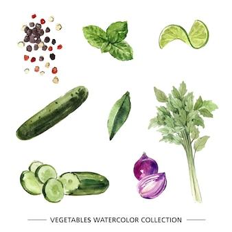 Conjunto de vegetales acuarela aislado