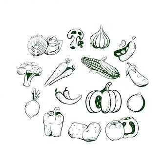 Conjunto de vegetales dibujados a mano