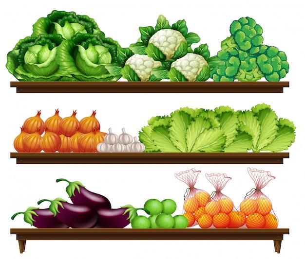 Conjunto de vegetales orgánicos.
