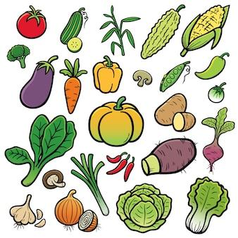 Conjunto de vegetales