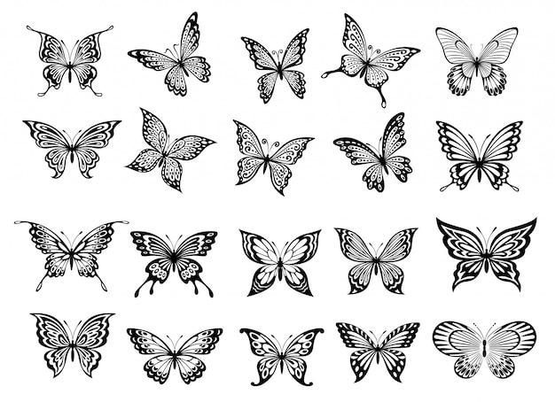 Conjunto de veinte mariposas