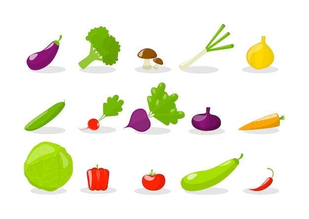 Conjunto de verduras. alimentos orgánicos frescos. brócoli y zanahoria, pimiento y rábano. ilustración