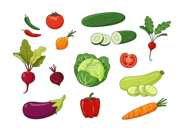 Conjunto de verduras dibujadas a mano en estilo cartón