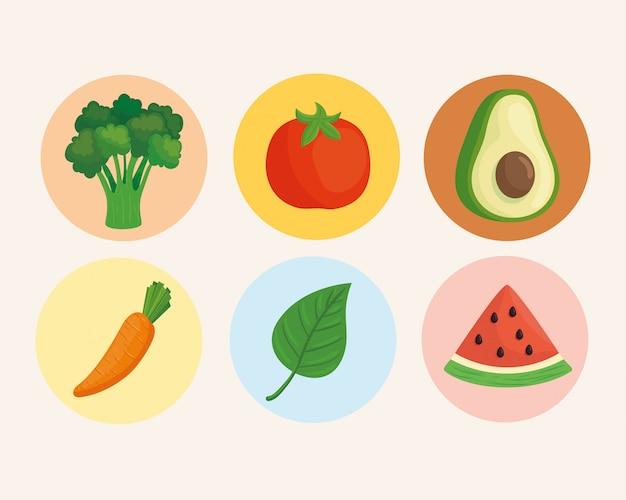 Conjunto de verduras frescas en marcos redondos, concepto de comida sana